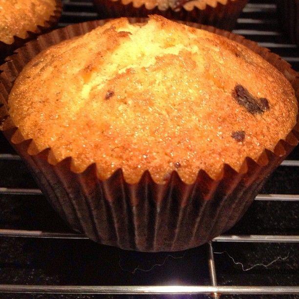 Gluten / dairy free chocolate chip sponge cakes #Padgram