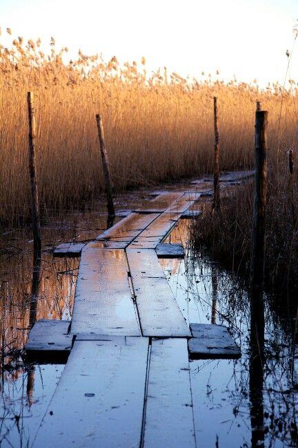 Viikki nature reserve area - Viikin luonnonsuojelualue in the city of Helsinki, Finland