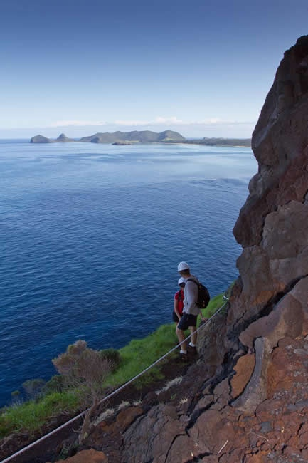 (Nov 2015) I can't believe I did this! Probably the most treacherous 'hike' I've ever done! Mount Gower | Lord Howe Island