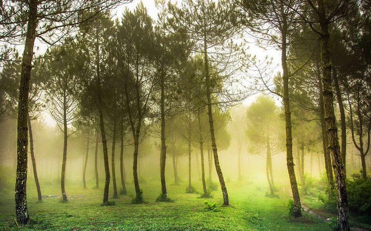 photo pemandangan alam bandung pemandangan alam photo pemandangan alam bandunghttp://pemandanganoce.blogspot.com/2017/10/photo-pemandangan-alam-bandung.html #pemandangan #pemandangan indah #pemandangan alam