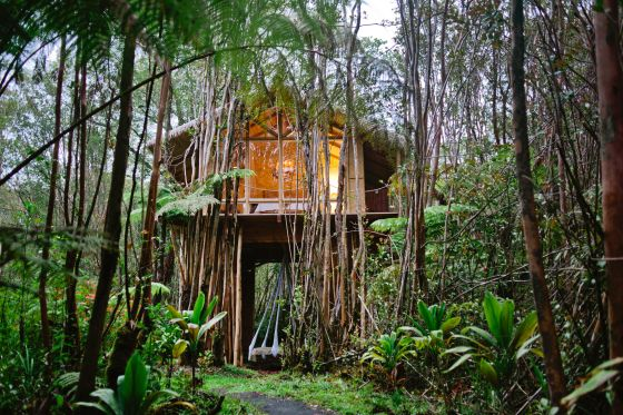 This Bamboo Treehouse Is the Most Wished-for Airbnb in Hawaii