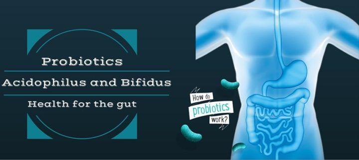 Acidophilus Bifidus health for gut