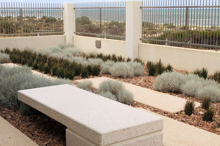 Tennyson residence - linear planting to compliment the strong vertical architecture of the home.