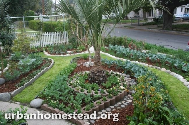 how to make your front yard look beautiful