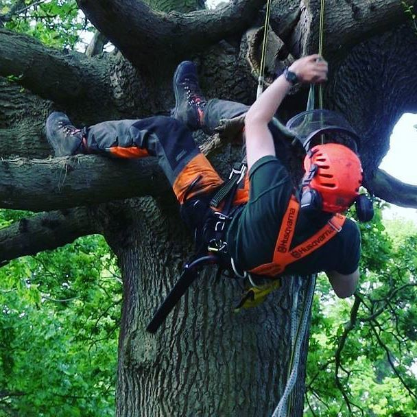 Performing Tree Removal Is Not Always Easy  http://blogs.rediff.com/treezy/2016/10/10/performing-tree-removal-is-not-always-easy/  #treeRemoval #treeServices #treeRemovalServices #treelopping #247TreeRemoval #247TreeRemovalServices #treeRemovalBrisbaneSouthside #treeServicesBrisbaneSouthside #treeRemovalServicesBrisbaneSouthside #treeloppingBrisbaneSouthside #247TreeRemovalBrisbaneSouthside #247TreeRemovalServicesBrisbaneSouthside