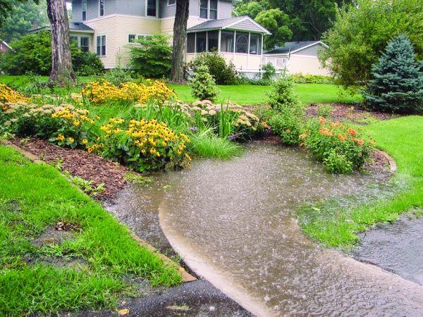 90 Best Rain Gardens Images On Pinterest Rain Garden 400 x 300