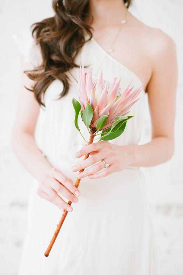 single protea bouquet, photo by Blush Wedding Photography http://ruffledblog.com/modern-tropical-wedding-inspiration #weddingbouquet #flowers