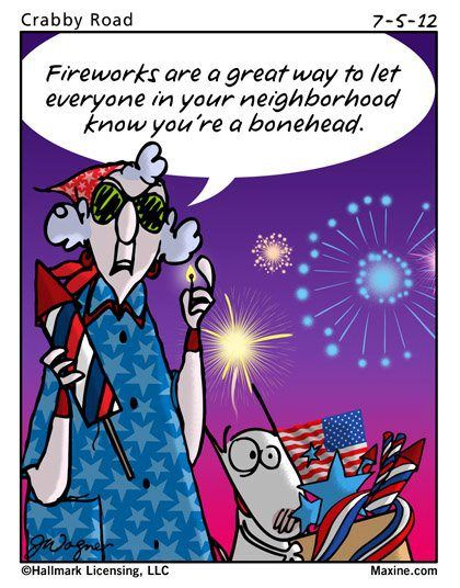 zion 4th july fireworks