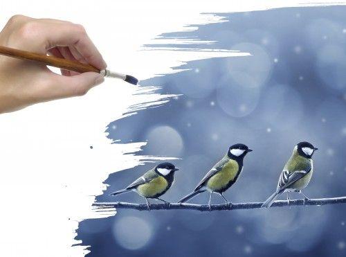 Обои синицы, ветка, Кисть, птички, снег, рисунок, рука на рабочий стол 71192