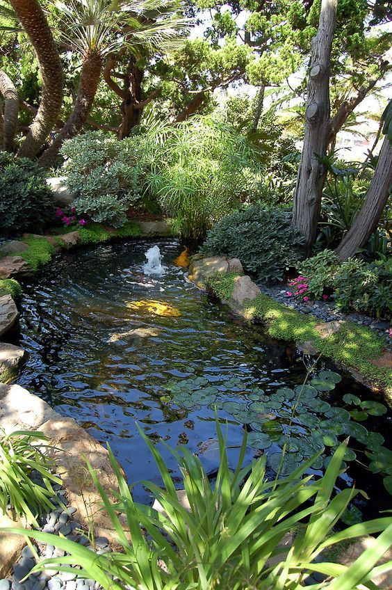 437 best Small Garden Ponds images on Pinterest | Small ... on Backyard Pond Landscaping Ideas  id=26633