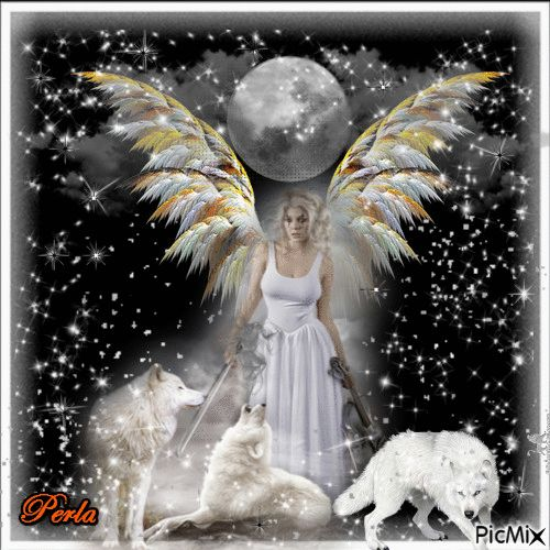 1000+ Images About Jst Magical Wolves & Frnds B Gif On