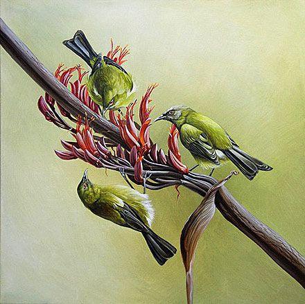 craig platt nz native bird artwork- Bell birds on Flax