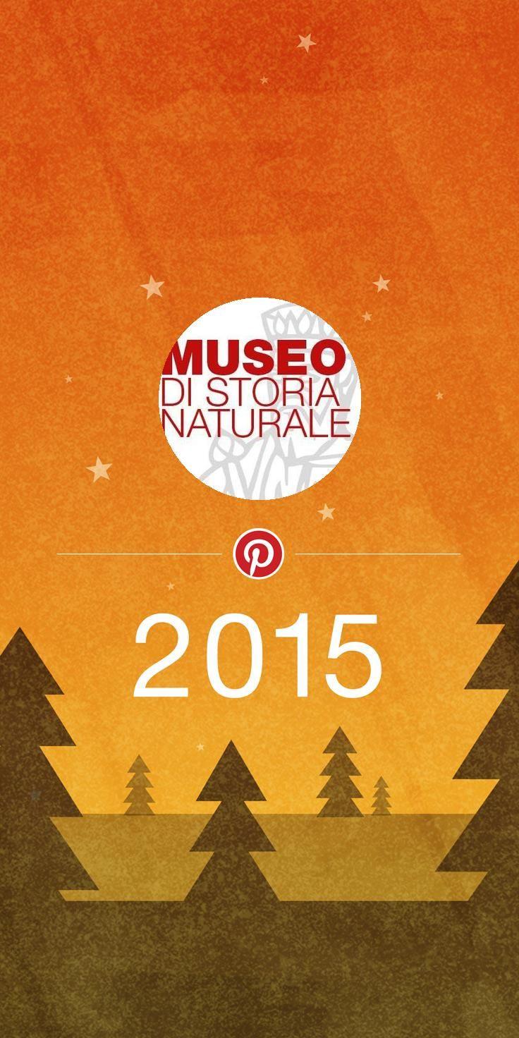 Guarda che cosa fa tendenza per Museo di Storia Naturale dell'Università di Firenze quest'anno!