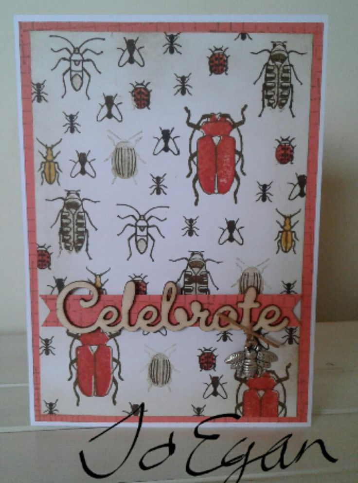 Made by Jo Egan using Stampin up beetles and bugs.