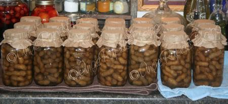 next adventure... pressure canned boiled peanuts. I always want them when they're out of season. Not any more!