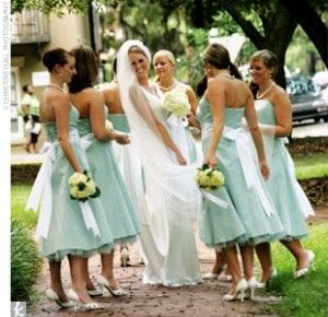 Light blue: Bride Maids, Bridemaids Dresses, Bridesmaid Dresses, Bridemaid Dresses, Satin Ribbons, Bridesmaid Colors, Bridesmaids Dresses, Green Ideas, Lights Blue Dresses