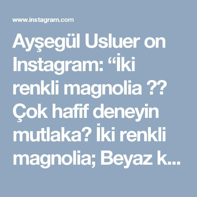 """Ayşegül Usluer on Instagram: """"İki renkli magnolia ☺️ Çok hafif deneyin mutlaka😋 İki renkli magnolia; Beyaz krema için; •3 su bardağı süt •2 yemek kaşığı nişasta •2 yemek…"""""""