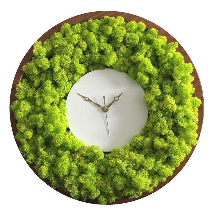 """Результат пошуку зображень за запитом """"moss clock"""""""