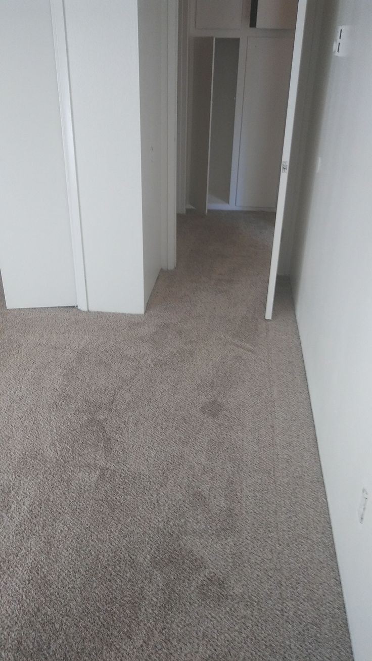 Order your carpet in Truffle color today. We have this color in stock! #Flooring #Carpet #Installation #FreeEstimates #vsflooring #PropertyManagement #RealEstate #Homeowners #LongBeach #SouthBay #LA #LosAngelesCounty #OrangeCounty