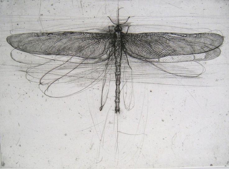 Dragonfly by Italian painter & engraver Lanfranco Quadrio (b 1966). via B-sides