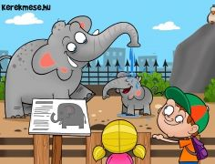 Elefánt az állatkertben