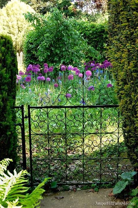 Lovely little garden gate at Kiftsgate Court in England.