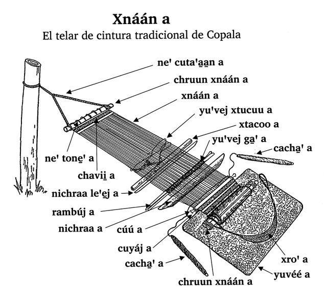 Triqui Copala