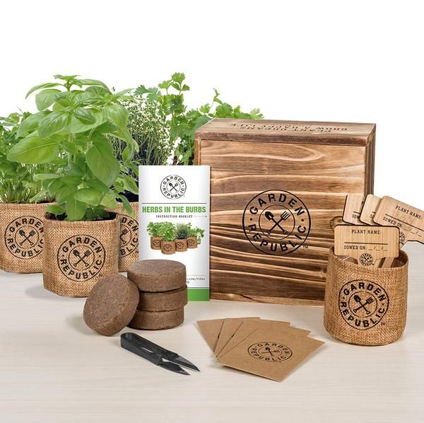 Indoor Culinary Herb Garden Starter Kit Organic Non Gmo