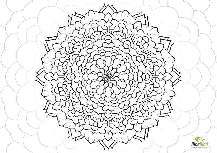 Paradise flower, This will reveal you the paradise, take care of it http://dicebird.com/paradise-flower-free-printable-coloring-pages-adults-and-kids/