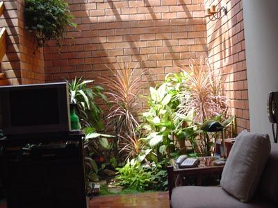 Jardines interiores casas peque as buscar con google for Casas con jardin interior