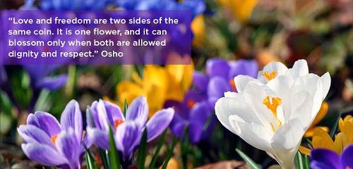 Short Osho Quotes on Love