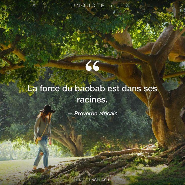 """Proverbe africain """"La force du baobab est dans ses racines."""""""