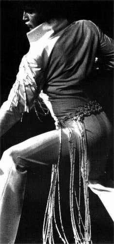 Elvis in Action!!!:D