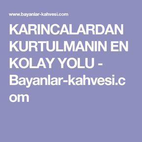 KARINCALARDAN KURTULMANIN EN KOLAY YOLU - Bayanlar-kahvesi.com