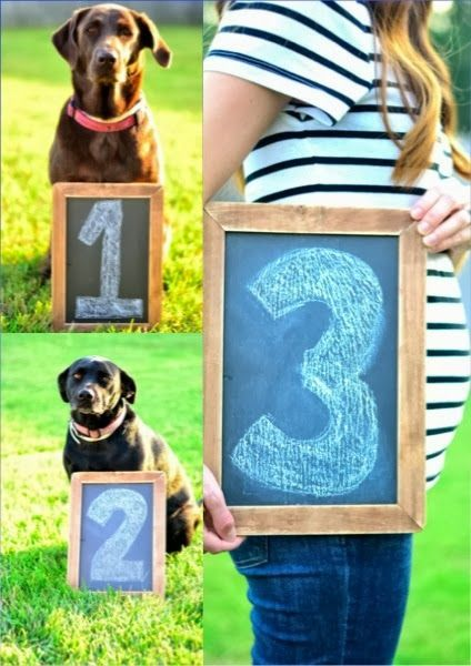 """3. This is an adorable way to include your pet """"babies"""" in your pregnancy announcement."""