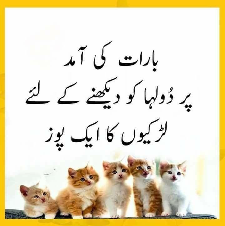 Hahahahahahahaha Kuch Pinterest py log bhe asy hai