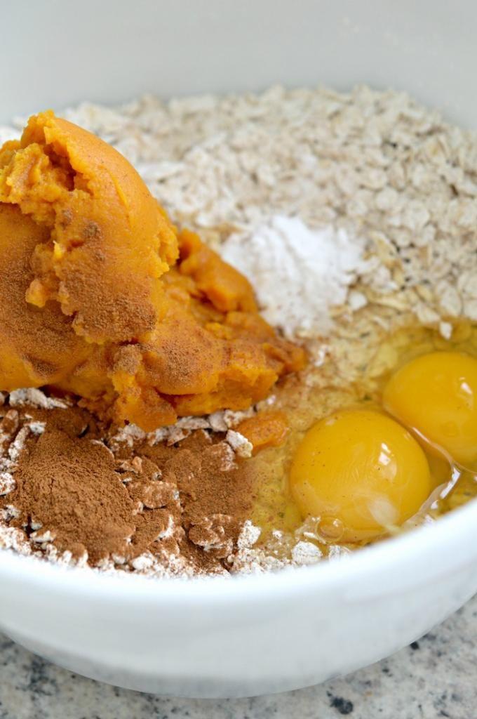 Hypoallergenic Cat Food Recipes Homemade