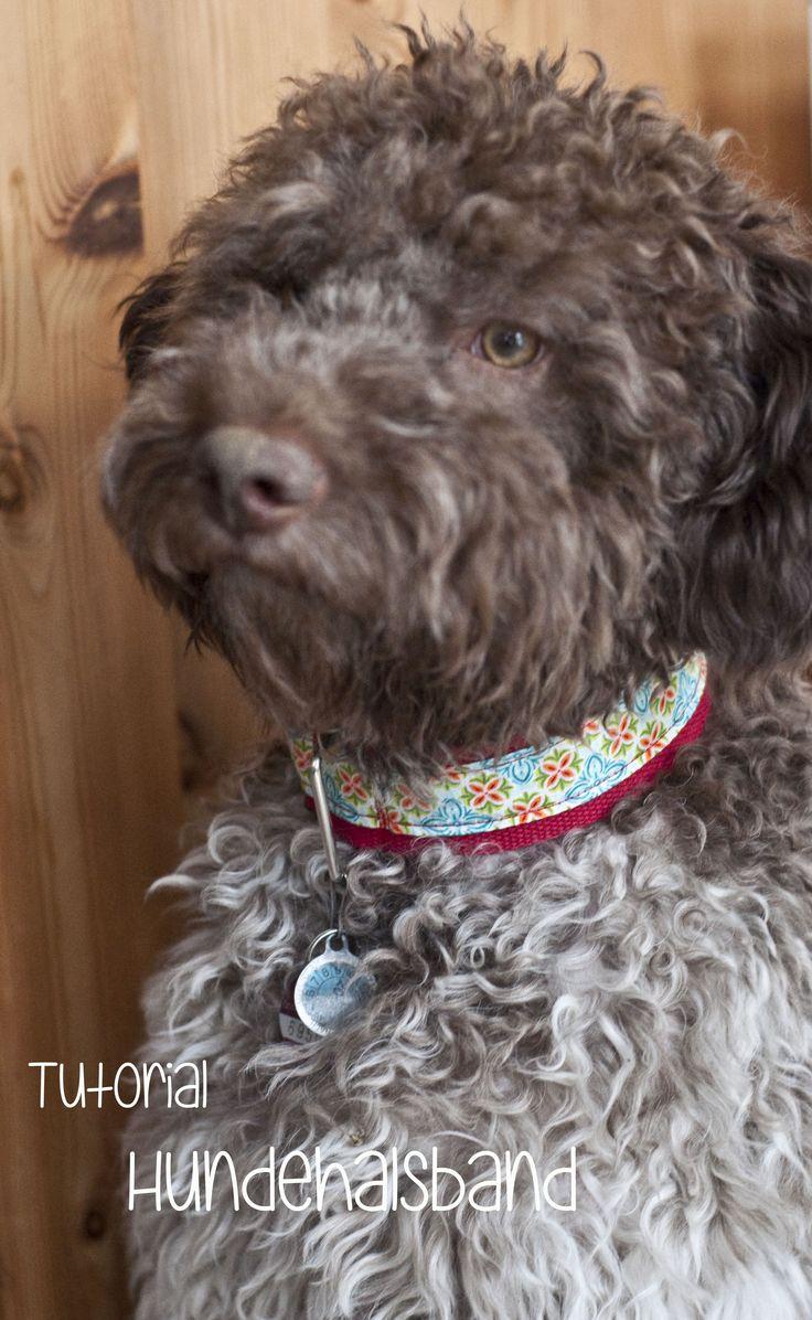 Es ist online. Mein allererstes Tutorial :)  maronas » Tutorial: Hundehalsband selbst genäht – anfängertauglich!