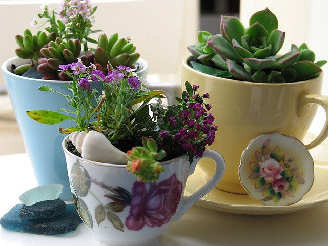 Using up old teacups is such a quaint way to display flowers ... it can really brighten up a small area with Love Klara