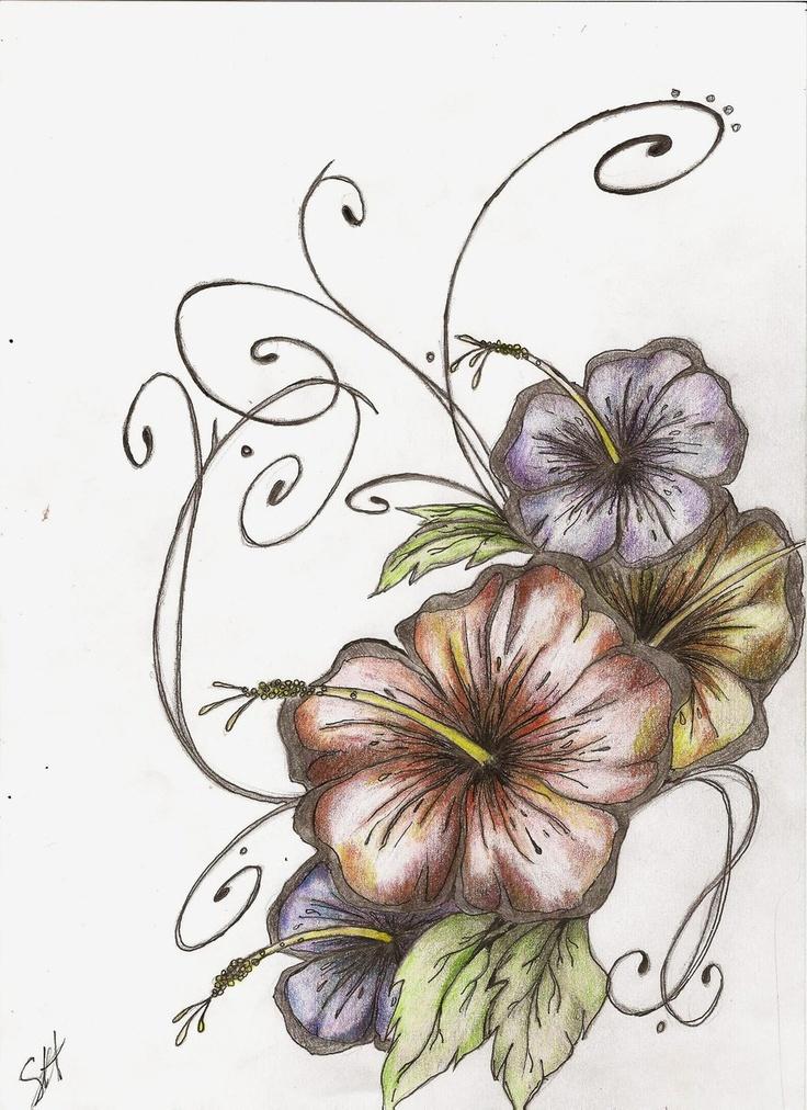 Hibiscus Tattoo... Dude. This might be the beginning drawing of the tattoo I reaaallyyy want...