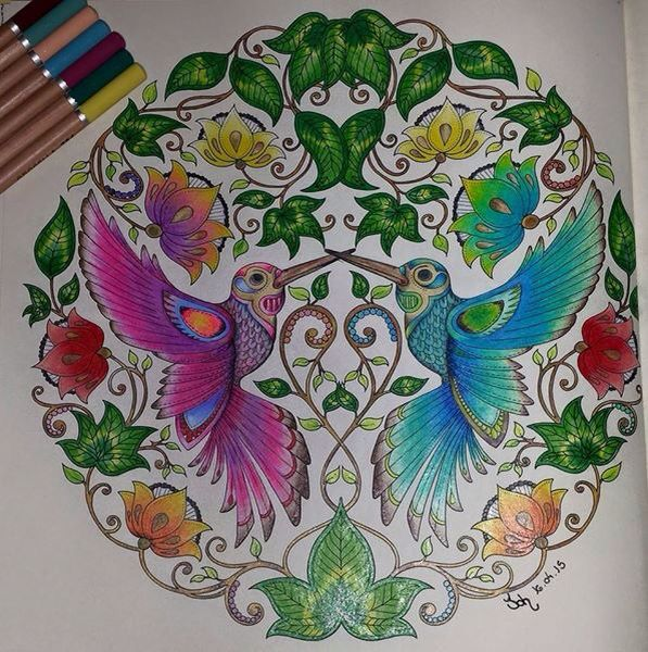 Secret Garden Coloring Book Birds Best Images About Humming Beija