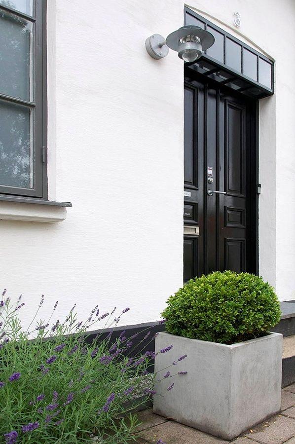 My fave! black door, boxwood, lavender: Boxwood Planters, Squares Planters, White Houses, Back Doors, Black Doors, Doors Black, Planters Boxes, Exterior Doors Plans, Concrete Planters