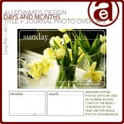 Project Life OverlaysLife Overlay, Ali Edward, Project Life, Digital Scrapbooking, Journals Photos, Scrapbook Digital, Projects Life, Photos Overlay, Month Title