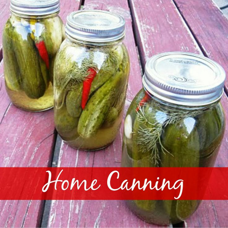 CookingwithK   Southern Kitchen Happenings:  Home Canning