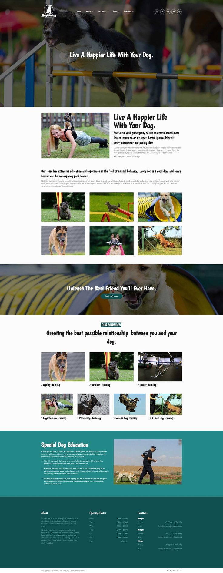 Superdog - a Dog Training   WordPress Theme.