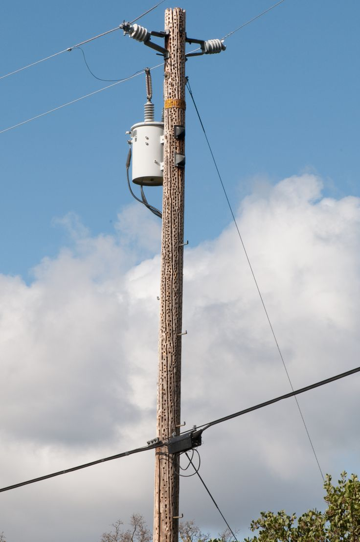 Electrical Power Poles : Telephone pole google search reference