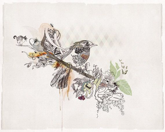 Bird Artwork Print of Original Ink Drawing, Watercolor Painting, Ink Bird Art
