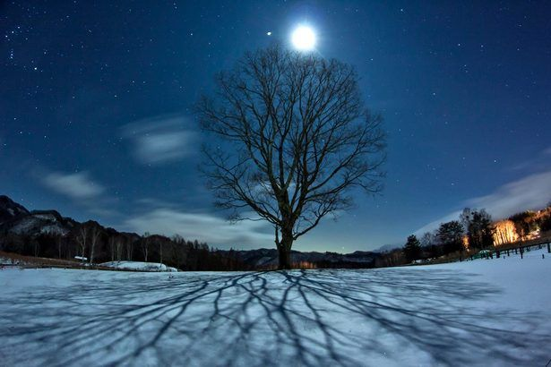 GANREF | 月明かりの下に 月の光を撮影した美しい写真
