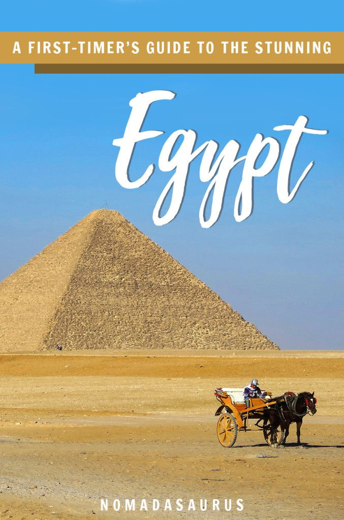 Planning to travel to Egypt? Here's everything you need to know for your first time visiting! #egypt #travel