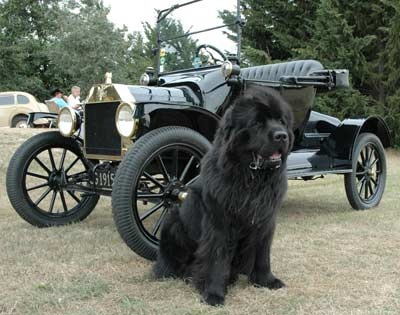 'Henry ' with Henry Ford's Model T